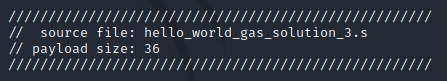 C-style comment header indicating the size and source file of the payload.