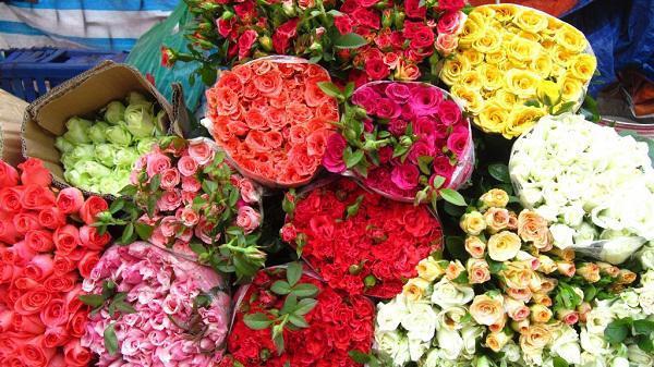 Kết quả hình ảnh cho chọn hoa tươi