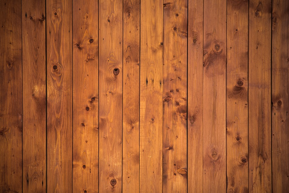 Woran erkennt man Holzarten?
