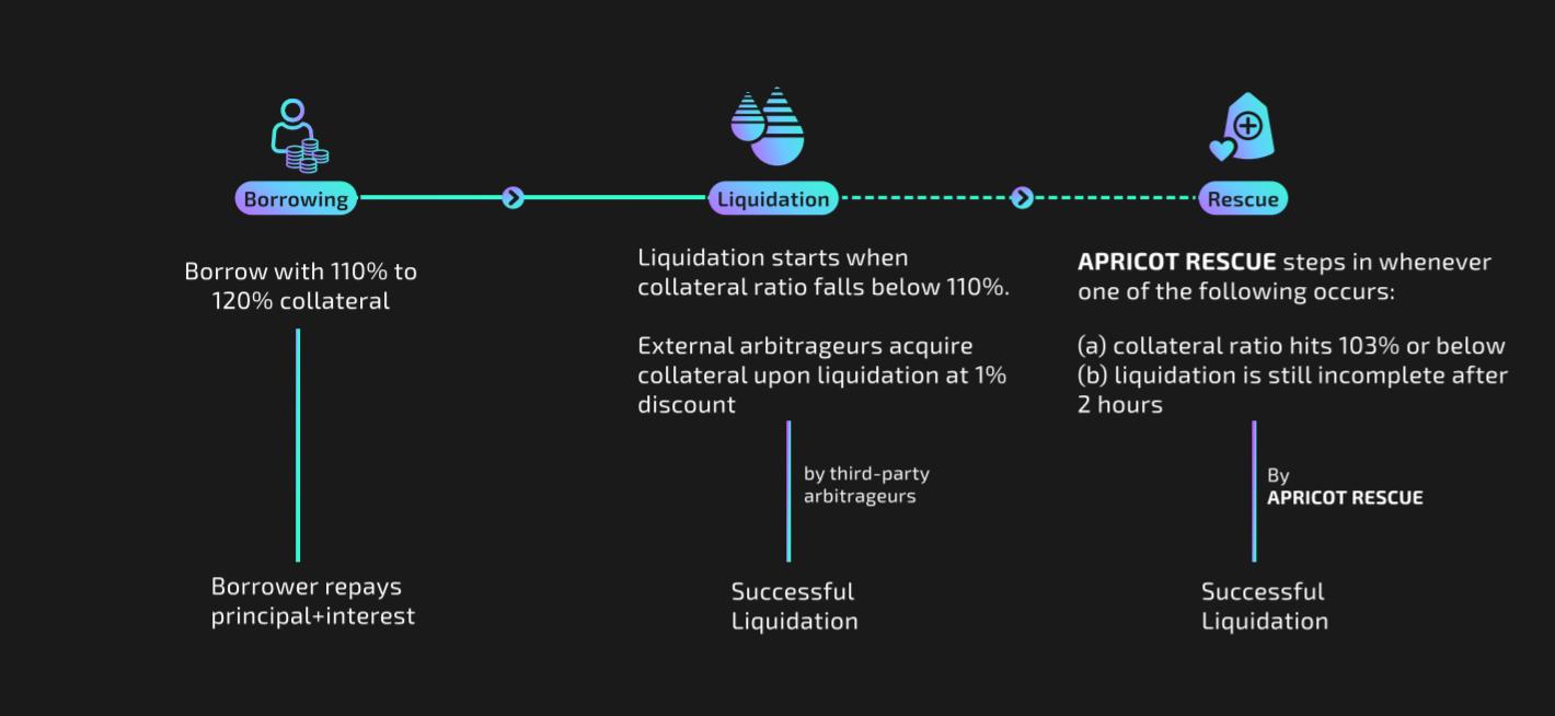 Kayısı Finansmanı: Solana'da Teminatlı Kredi Platformu 15