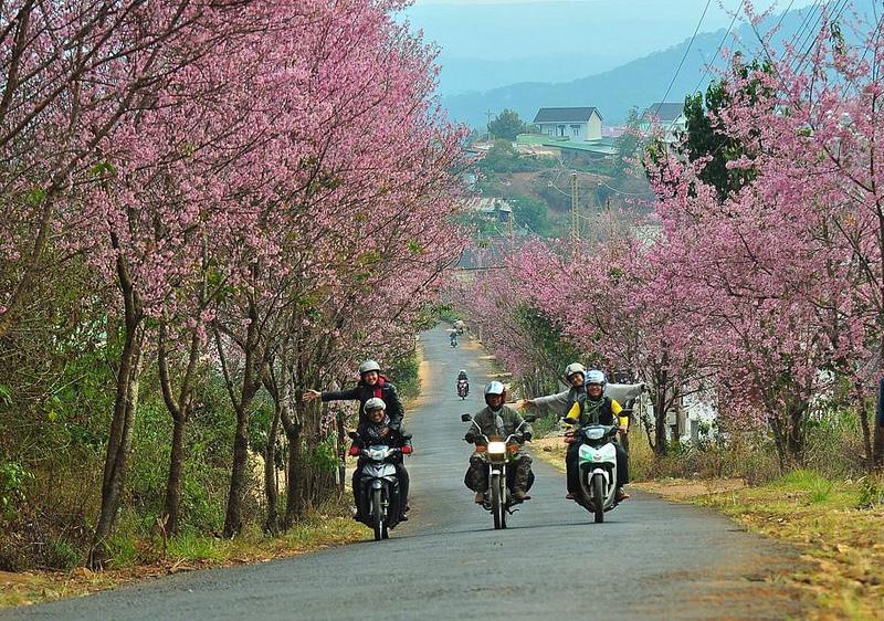 circuit-moto-a-dalat-vietnam