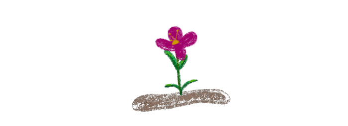 (image from original article) pink flower growing in the dirt