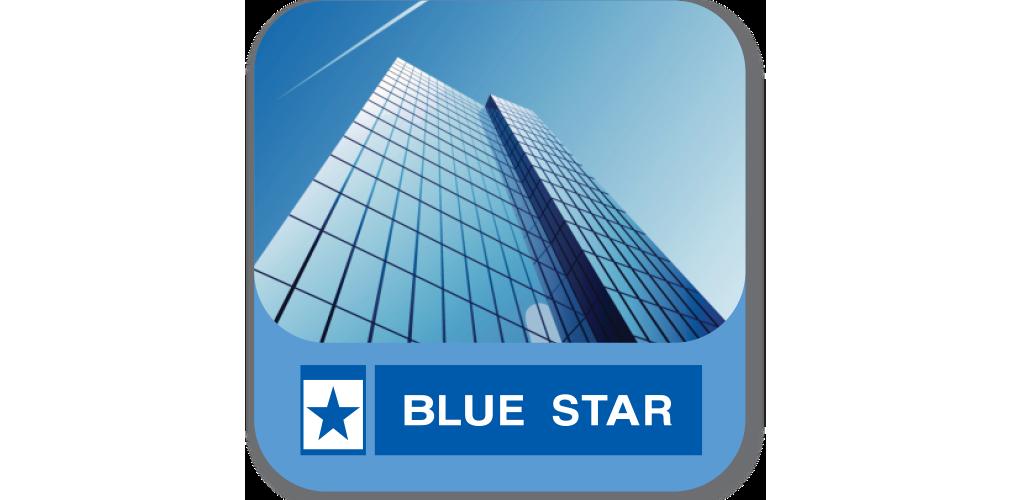blue star ltd essay Swot analysis review on blue star limited 22-blue star limited- corporate strategy  northern star resources ltd.