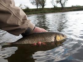 Риболов в буря по Росица