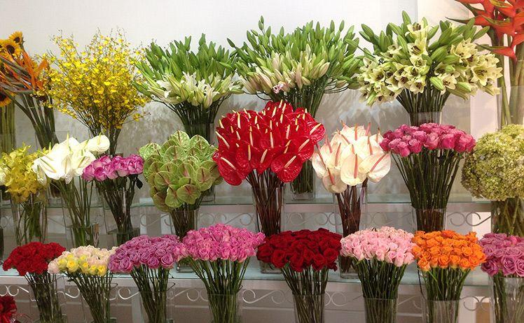 MrHoa là sự lựa chọn phổ biến của các khách hàng có nhu cầu mua hoa