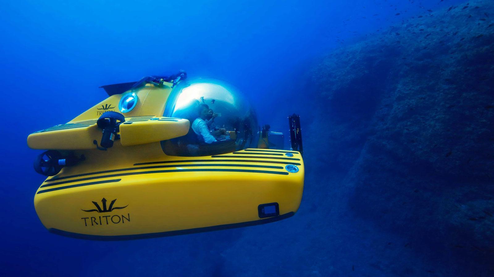 Ein Bild, das gelb, blau, Meeresgrund enthält.  Automatisch generierte Beschreibung