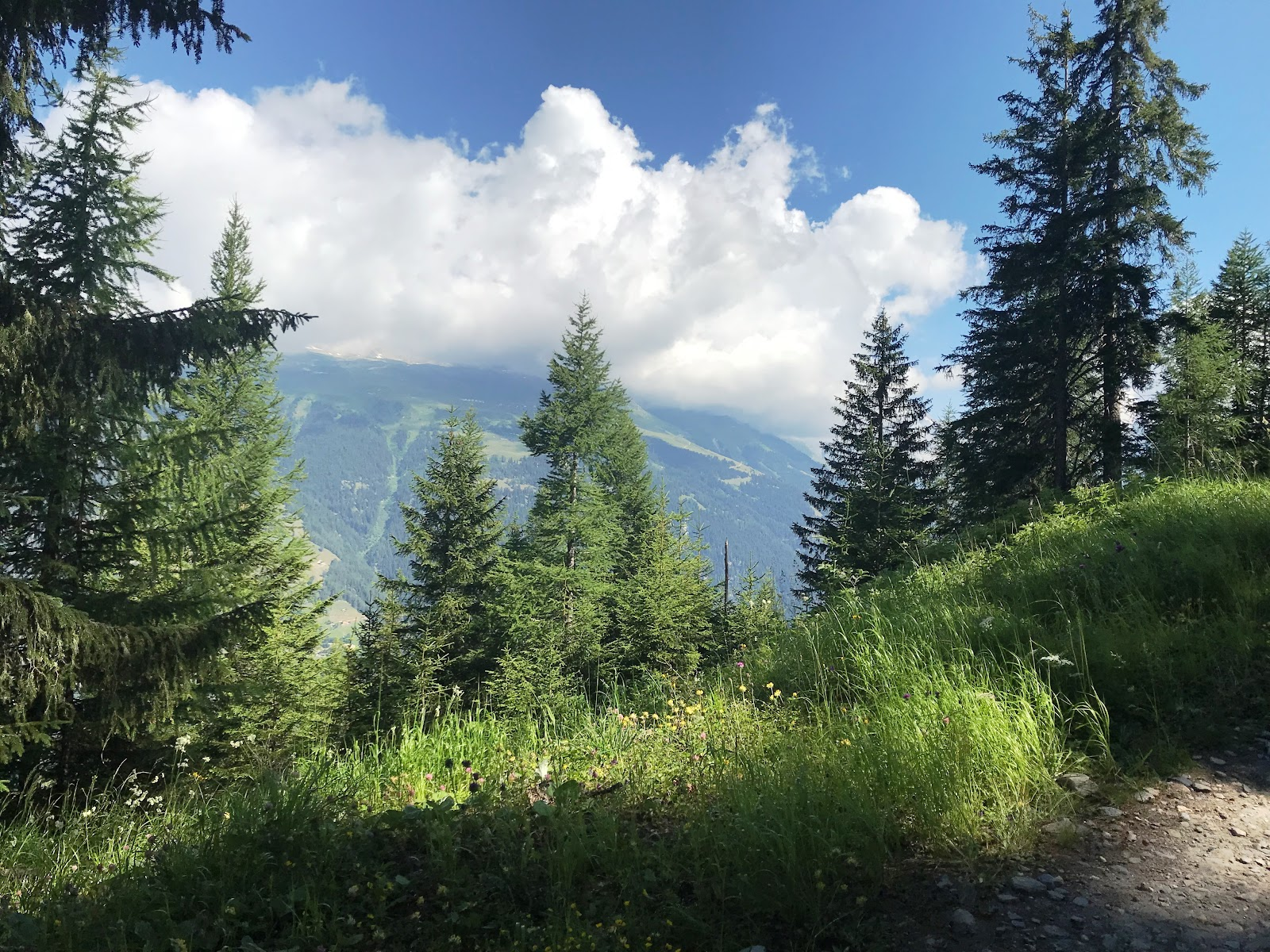 Bicycling Breithorn - views of Rhone Valley
