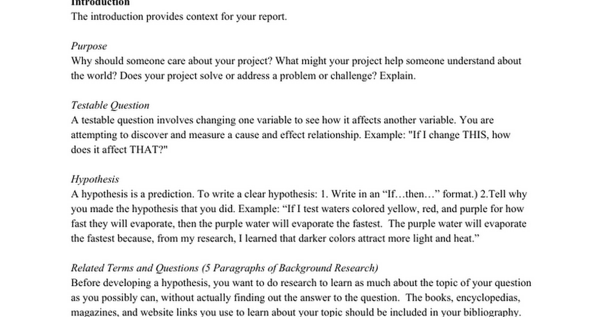 Free Book Report Sample  Example Book Report Essay | Essay