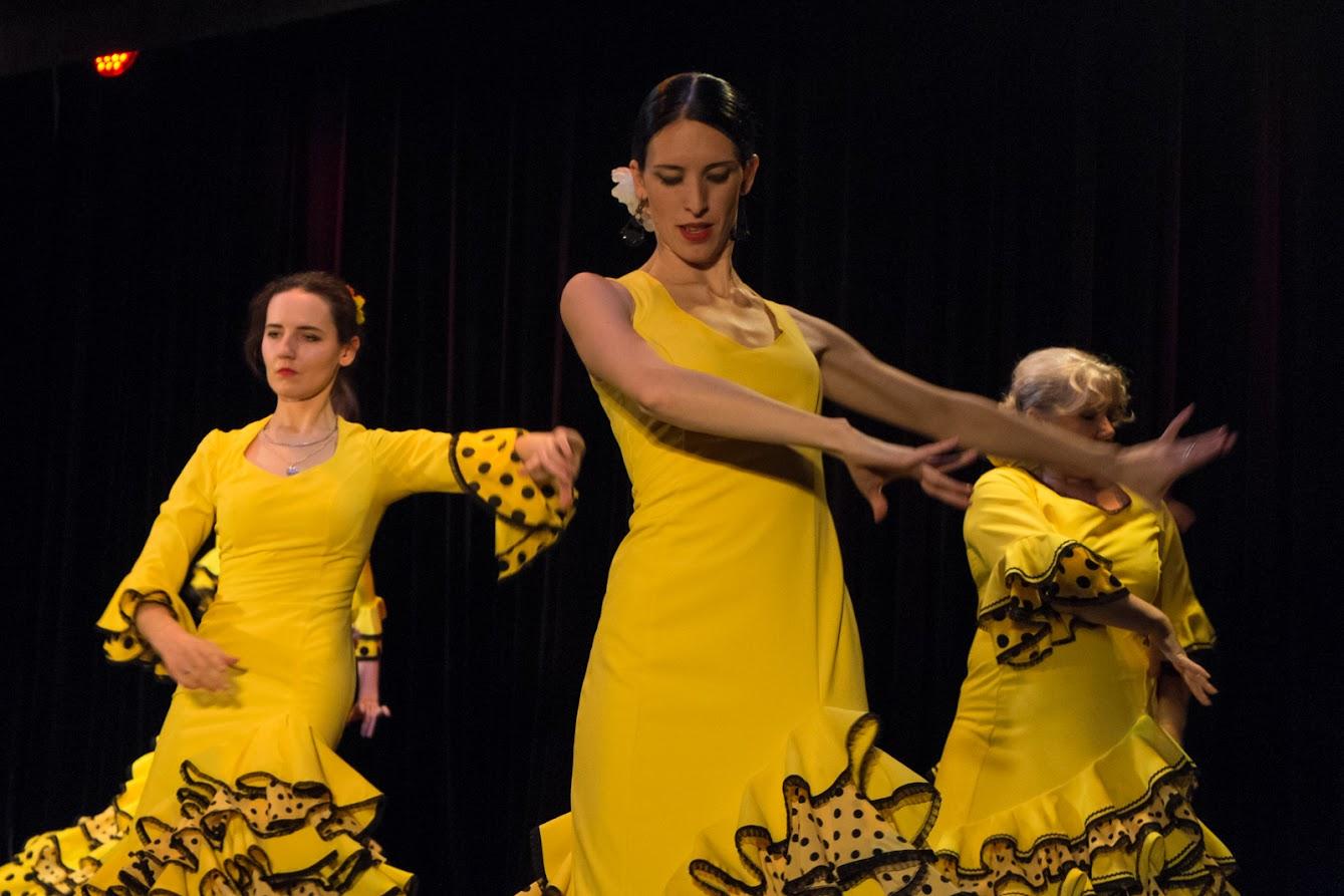 Фотографии концерта фламенко