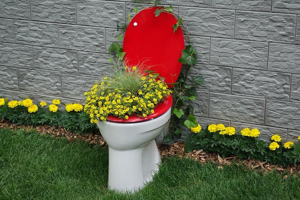 toilet-2304989_960_720.jpg