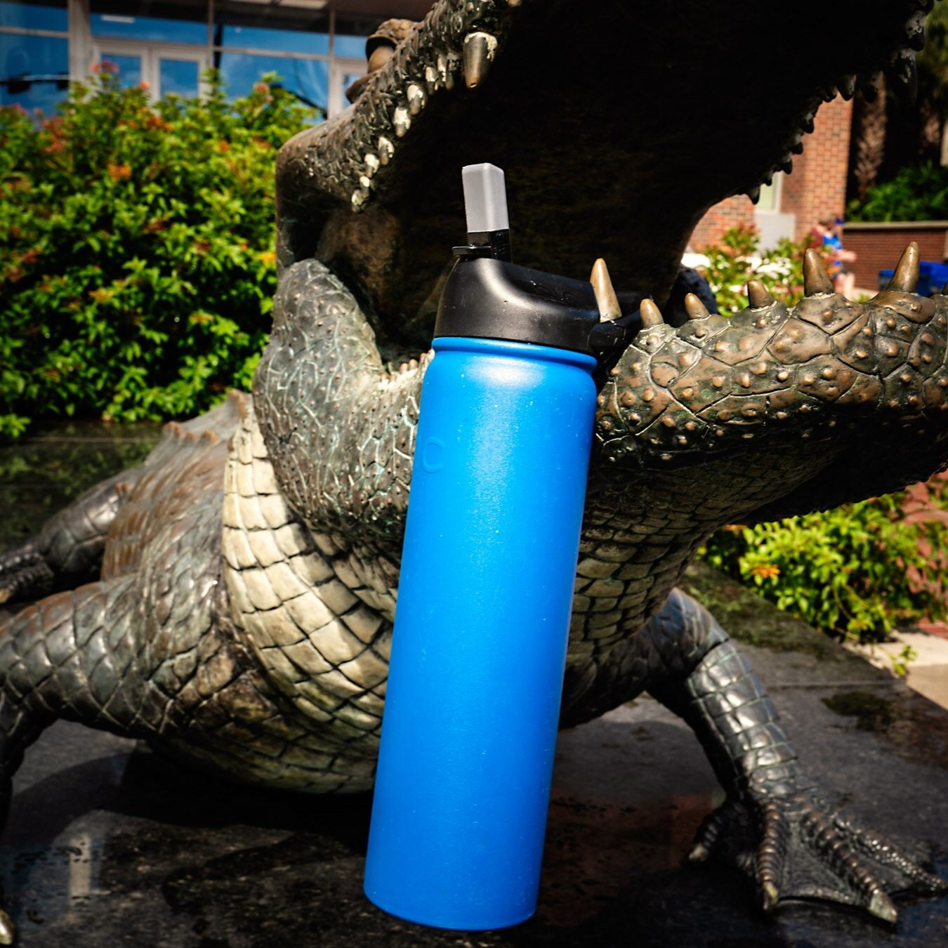 gator with waterbottle
