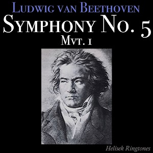 essays on beethoven fifth symphony In the fourth symphony, beethoven turned temporarily from the vast  of the  eroica and the fifth symphonies to a more reserved, classical expression   berlioz, who idolized beethoven and wrote extended essays on the symphonies, .