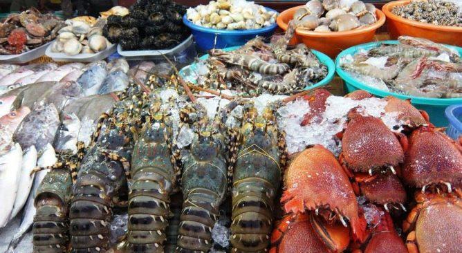 Du lịch biển Cô Tô - một sản phẩm tour.pro.vn không nên bỏ lỡ