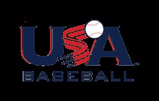 Image result for USA Bat Logo