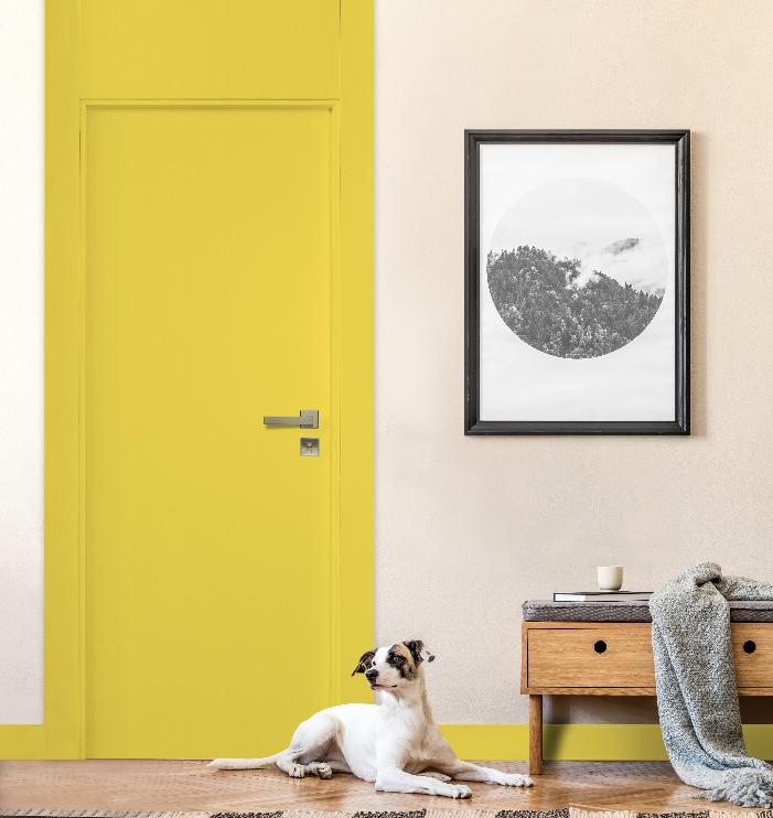 hall de entrada com porta amarela, pare rosa claro com quadro branco com moldura preta, piso de madeira, banquinho de madeira com gaveta e assento cinza, cachorro deitado na porta.