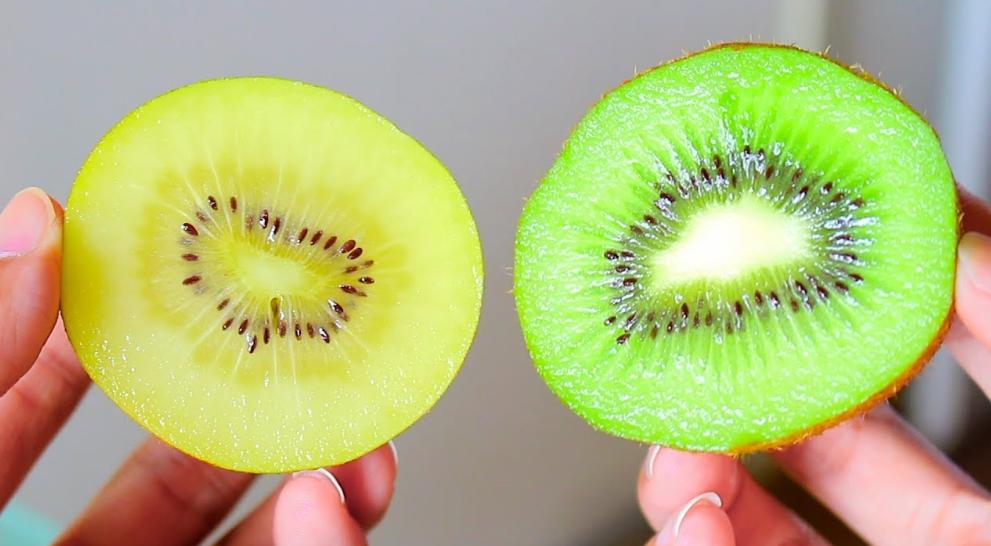 Đặc biệt, kiwi chứa lượng lớn vitamin C với hàm lượng cao gần gấp đôi cam, lượng vi chất gấp 10 lần quả táo.