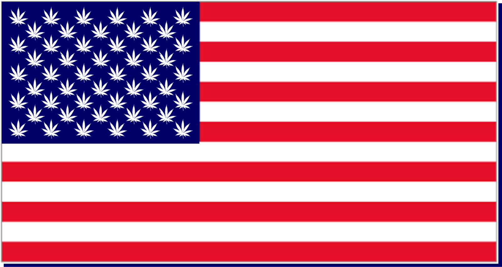 USA returns to its roots - marijuana roots - in 1776 the founding fathers grew marijuana