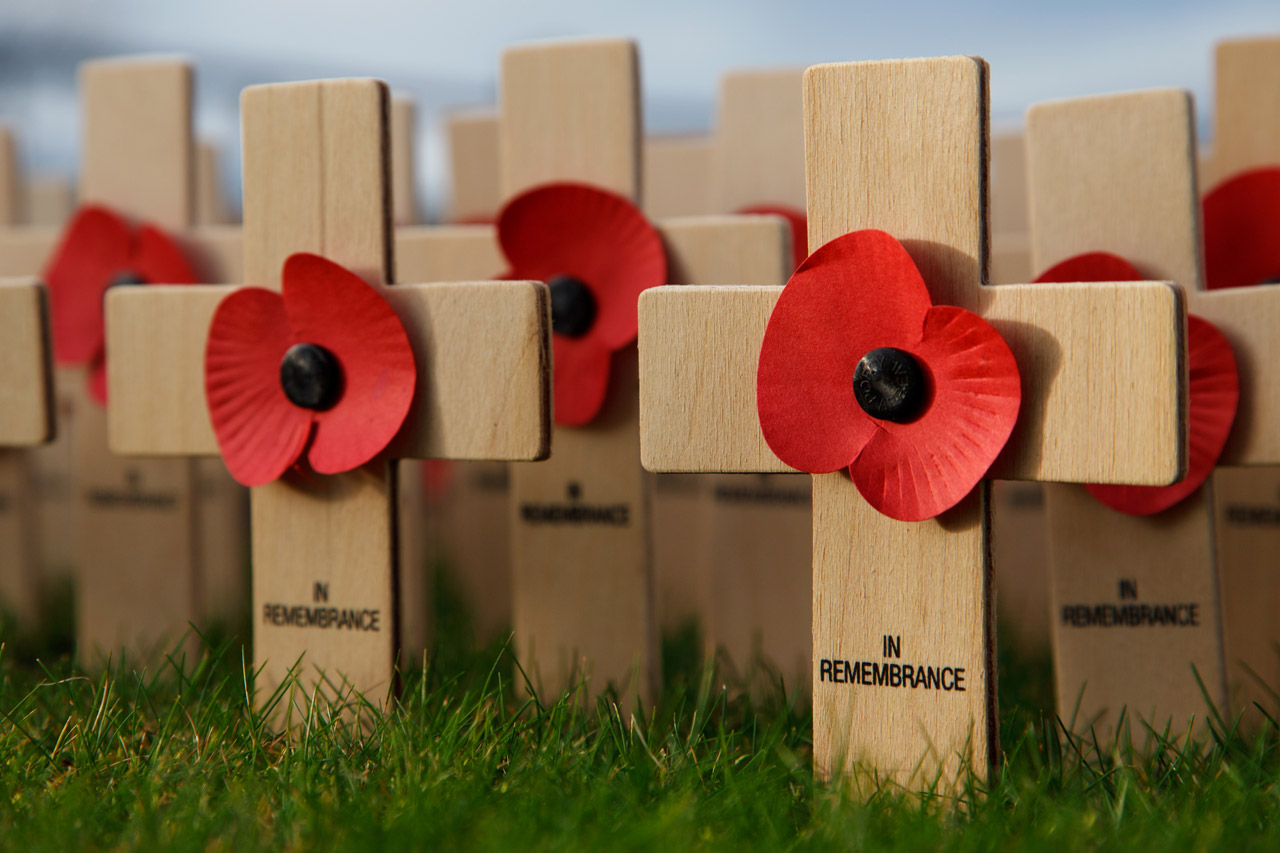 Remembrance Day Free Stock Photo - Public Domain Pictures