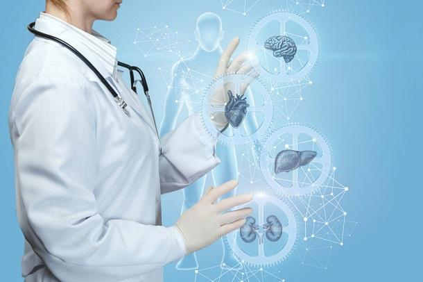 What Is an Internist Doctor? 3 Internal Medicine Physicians Share a Typical  Day