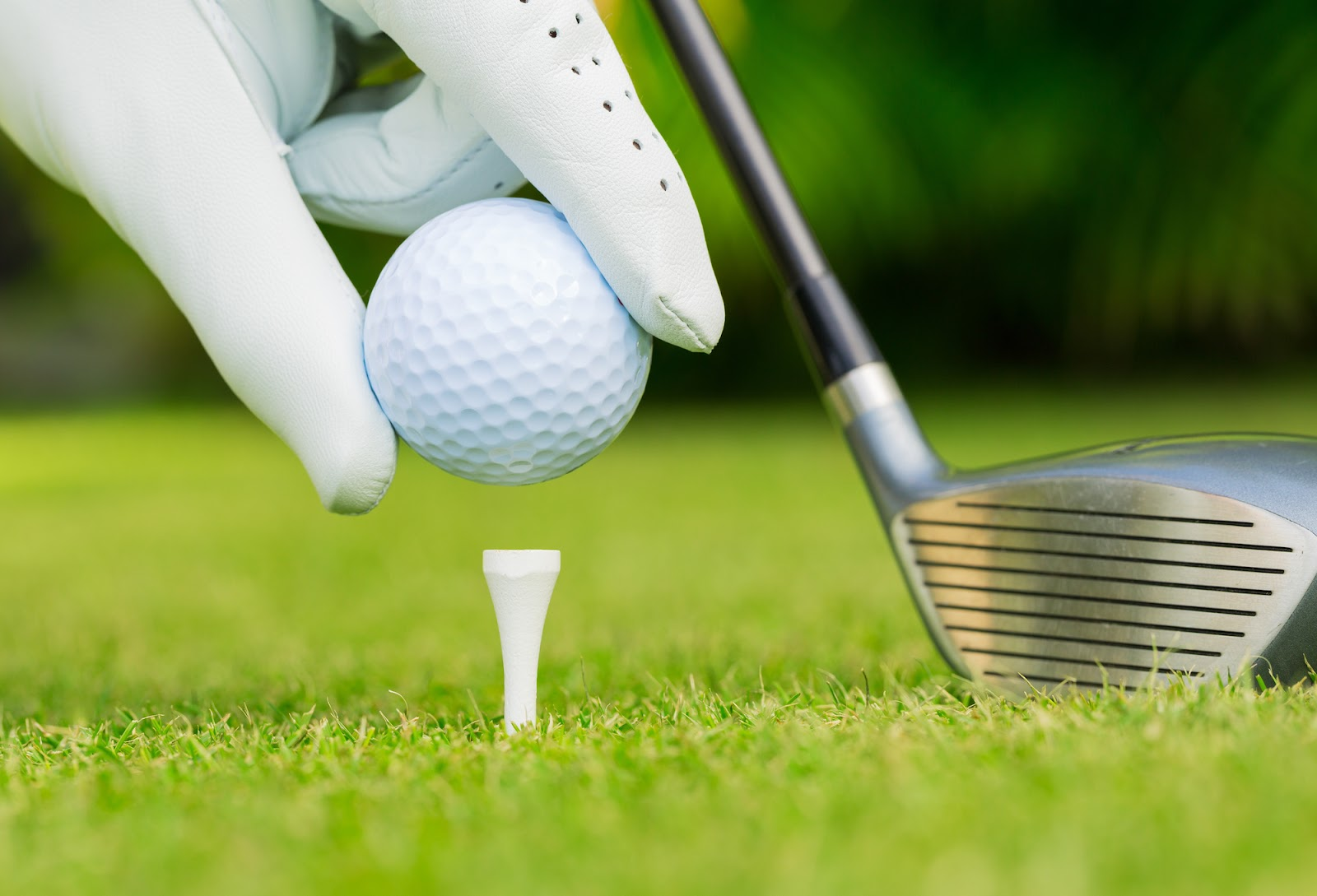 Tee Golf là vật dụng rất hữu ích của các golfer khi lên sân