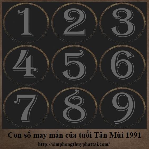 Luận giải con số may mắn của tuổi Tân Mùi 1991