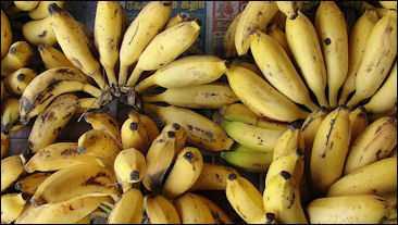 banana 4-compressed