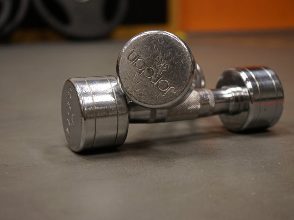 Top 6 Pieces of Gym Equipment For Your Home