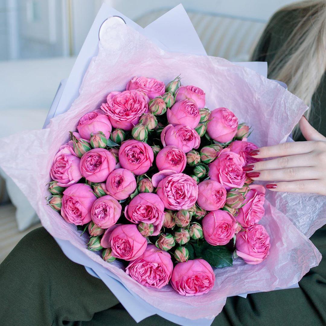 Самые красивые цветы в мире: названия, фото и интересные факты ...