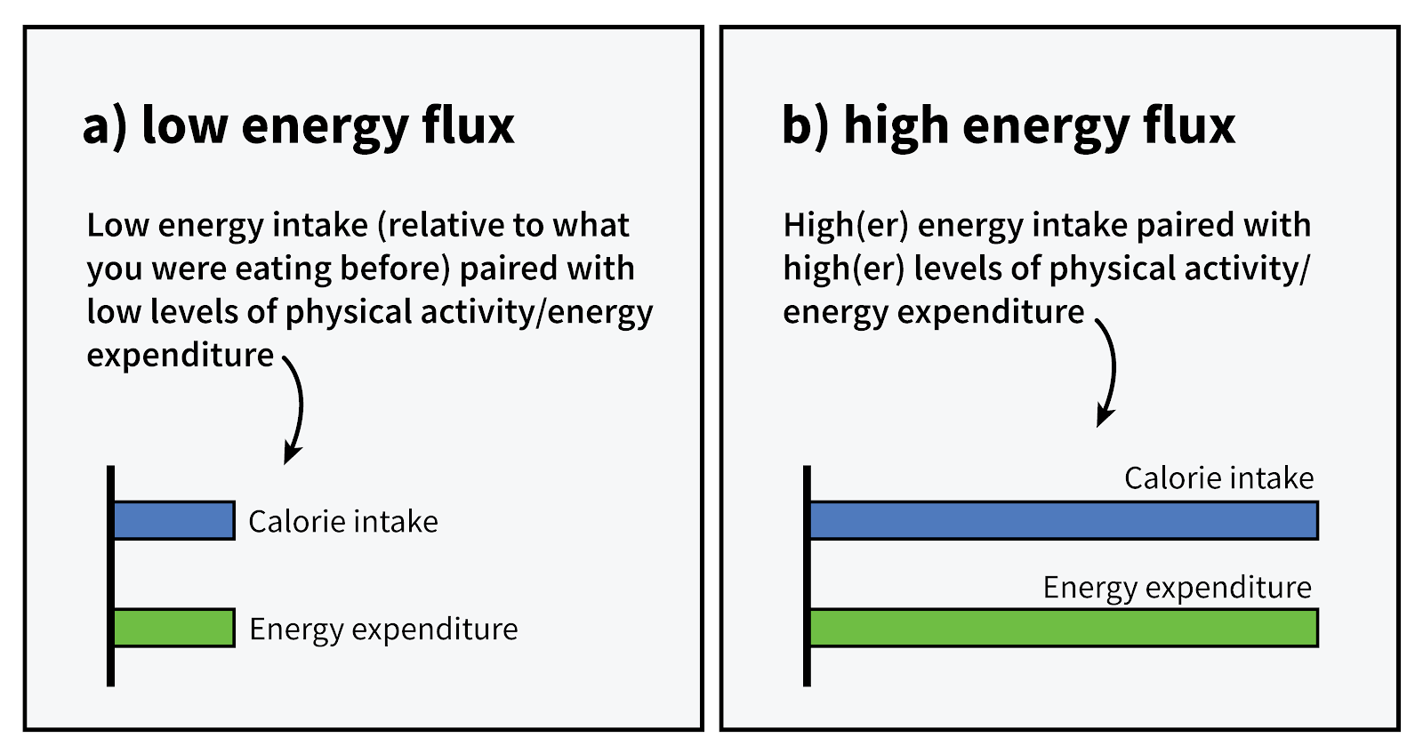 cardio-or-weights-energy-flux-graph