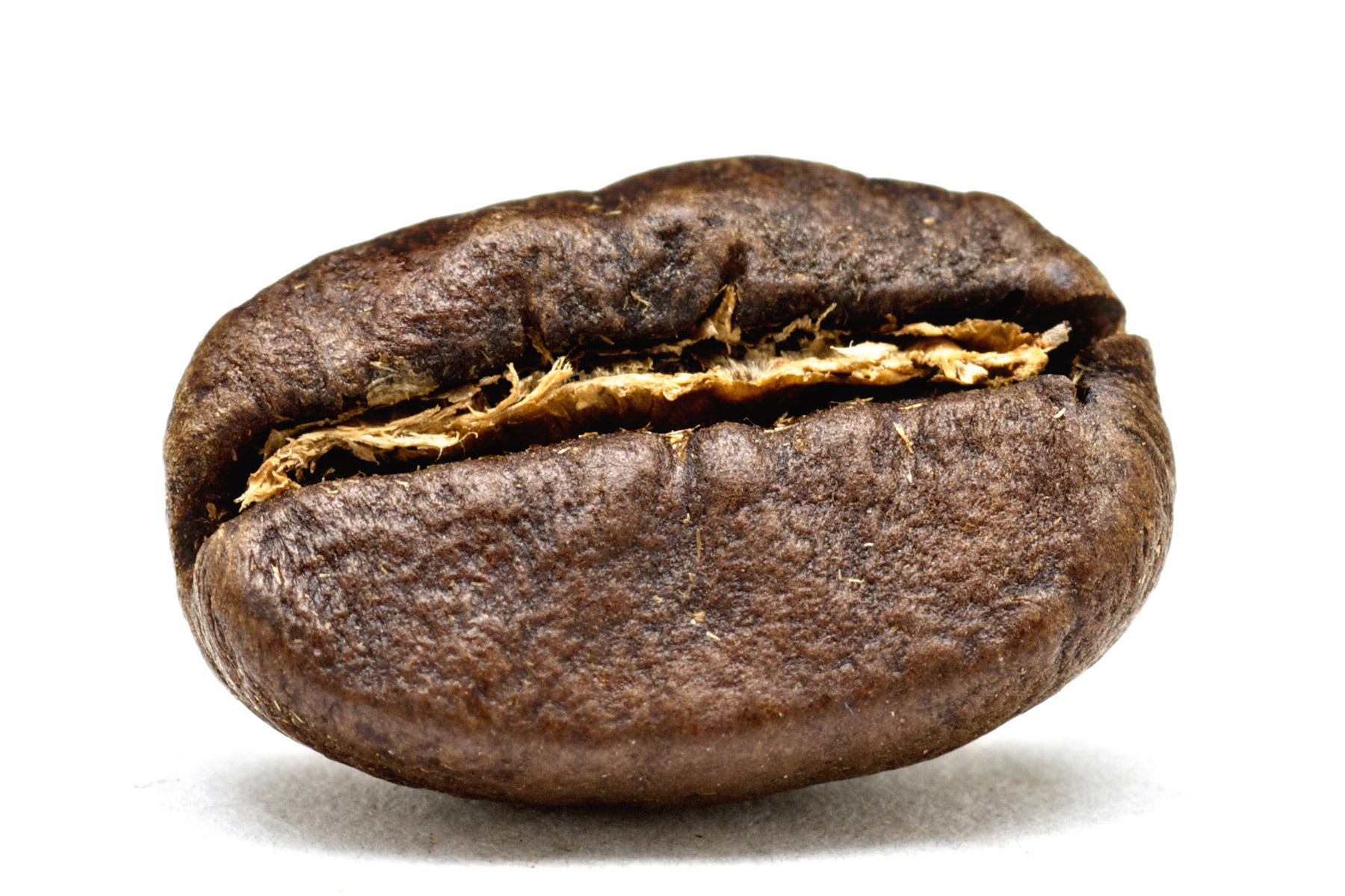 http://www.11roasters.com/data/photos/15_1kenya_coffee_bean.jpg
