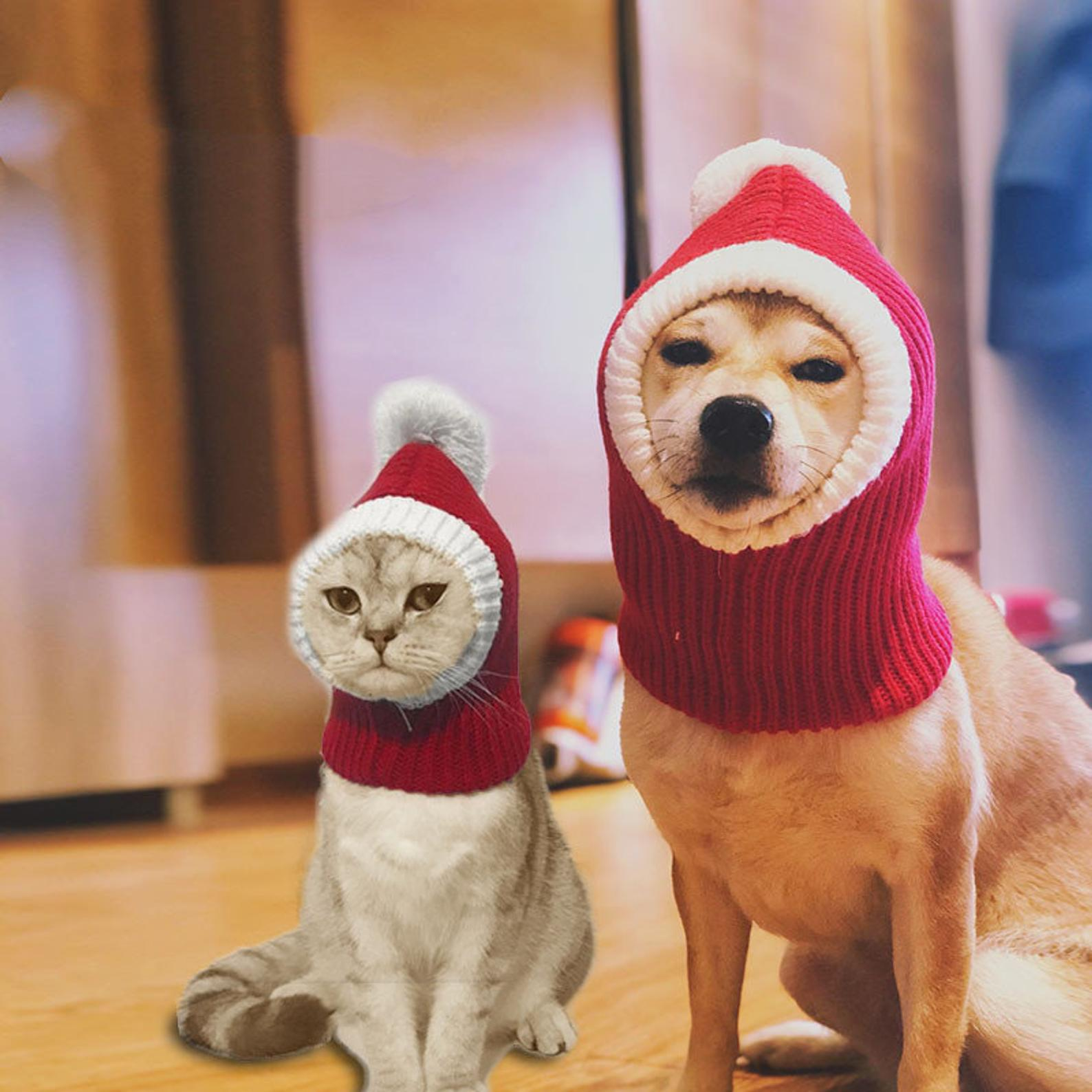 christmas sweaters for large dogs santa hoods