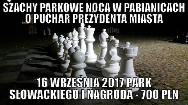 szachy park logo.png