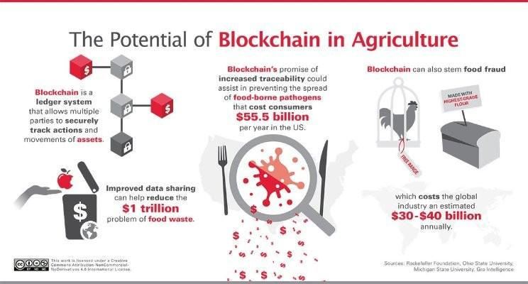 Image result for blockchain and agriculture