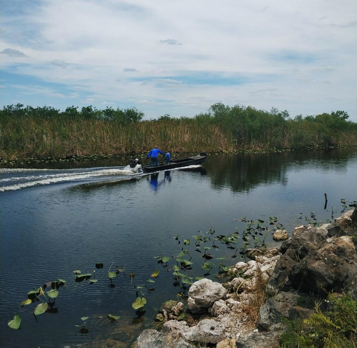 טיולי יום בפלורידה אטרקציות תנינים לאן כדגאי ללכת