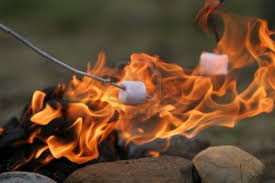 Image result for marshmallow in fire