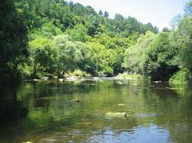 Река Янтра - село Гостилица
