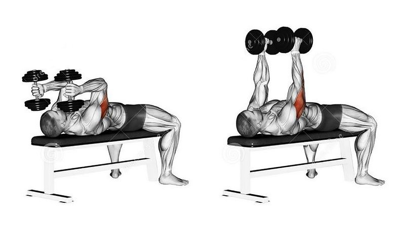 Tricep Exercises and Workouts For Men