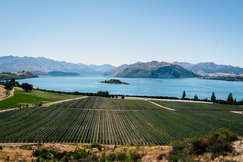 Views over Rippon Vineyard in Wanaka, near Queenstown.