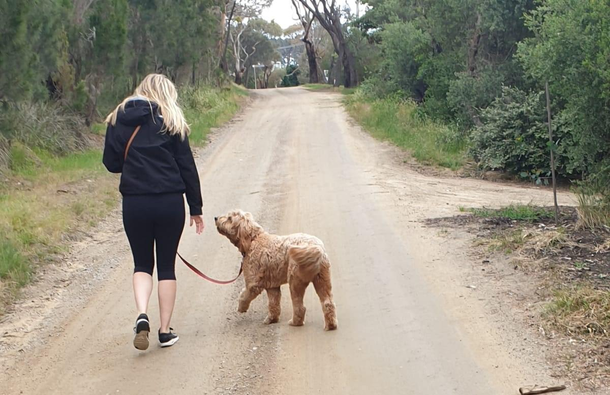 A person and a dog walking on a dirt road - house sitting in Australia