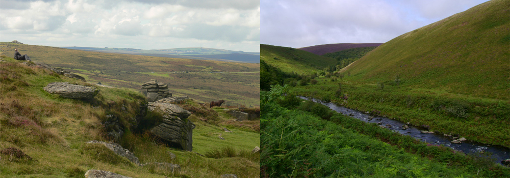 Explore the beautiful moorland of Dartmoor and Exmoor this autumn while on holiday in Devon.