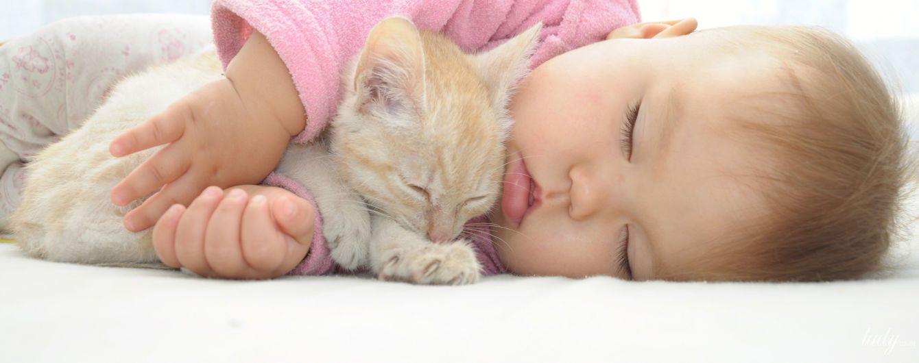 Домашние животные укрепляют иммунитет против коронавируса