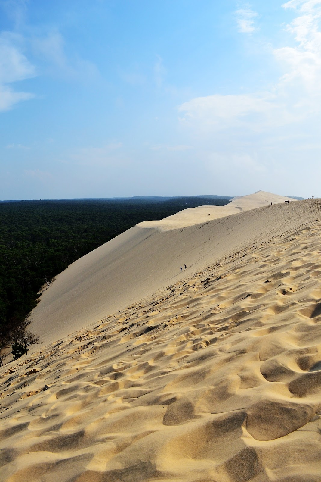 pilat france largest sand dune in europe large sand hill with people climbing and green trees in background
