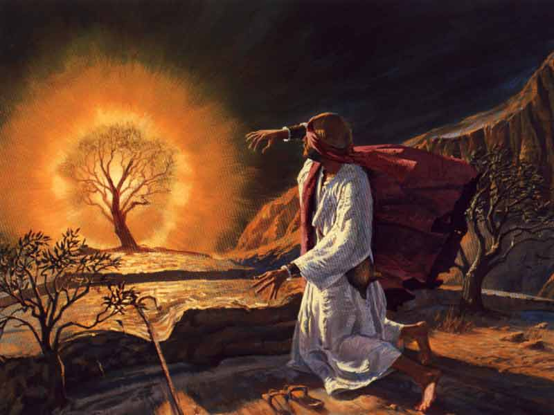 Called Out By The Burning Bush