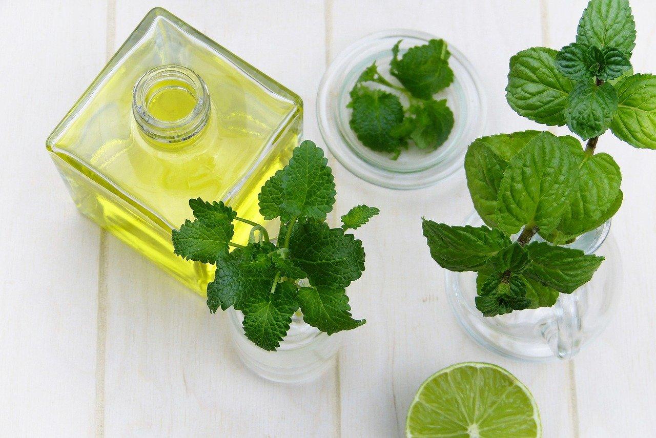 produit-antimoustique-moustiques-naturel-traitement-antimoustique-piqure-soigner