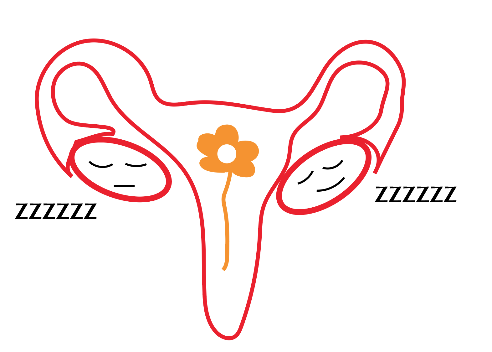 Hemorragias menstruales en la menopausia