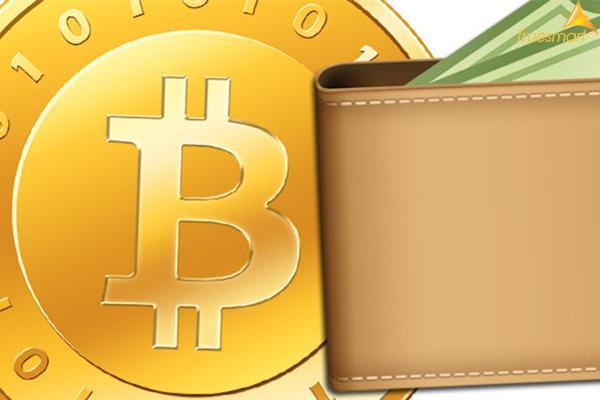 Ví Bitcoin là gì? Bitcoin là gì?