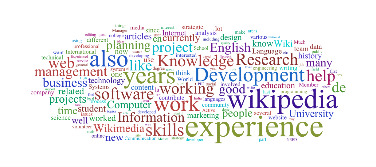 V_wordcloud_skill.png