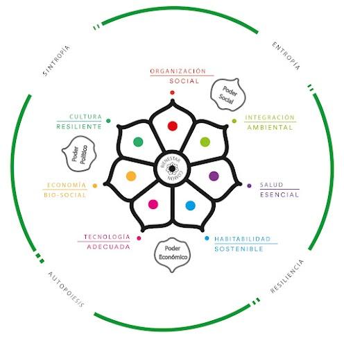 El paradigma biosistémico es un proceso y metodología, es nuestro microscopio y telescopio con el que hacemos la proyección de la visión acerca de trabajar con los fenómenos biológicos y sociales a favor del bienestar común. Esta inspirado en las prácticas y cosmovisión de los pueblos originarios, estudios de Biología Social de Maturana y Varela, la Permacultura y otras ciencias biológicas y sociales,  los ejes de búsqueda y acción se  componen por 7 gajos que tienen impacto en 4 fenómenos de los organismos vivos sean células o comunidades de personas, las cuales son capaces de generar tejidos como poder social que aumente las capacidades de resiliencia como individuo y colectivo, a través de encontrar su punto de autopoiesis pueden provocar y estructurar sintropia la cual es necesaria para la regeneración biológica y social.  Puedes colaborar en uno o varios gajos a partir de las células de talleres y proyectos.