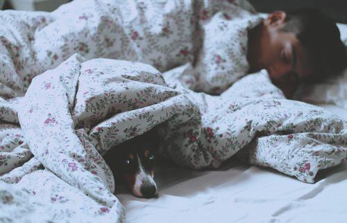 好的睡眠品質的示意圖