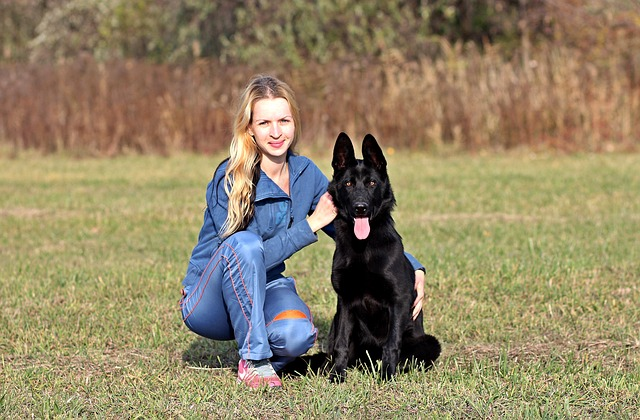 black german shepherd sitting next to a blonde hair woman kneeling in a grassy field